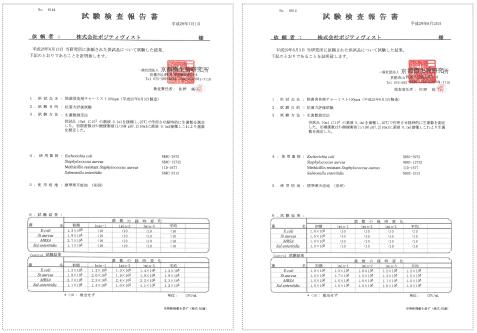 チャーミスト-分析結果報告書02